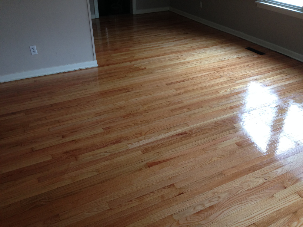 Red Oak floor still wet with final coat of varnish.